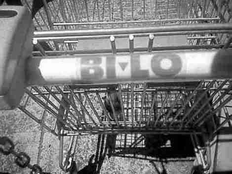 bi_lo_trolley_0001.jpg