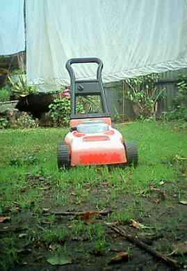 toy_mower_0001.jpg